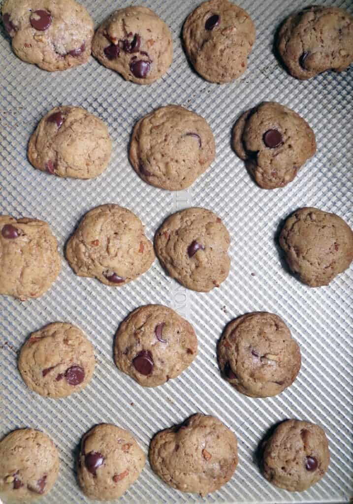 rows of golden brown chocolate chip cookies on a textured metal surface